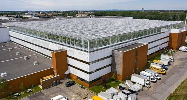 csm_World_s_biggest_rooftop_greenhouse_opens_in_Montreal__7dd1be37c2-1